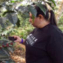 Marcela Gutiérrez, Entrenadora de Academia Barista Pro