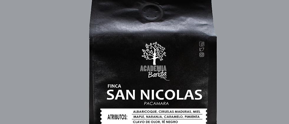 Finca San Nicolás Pacamara 12oz