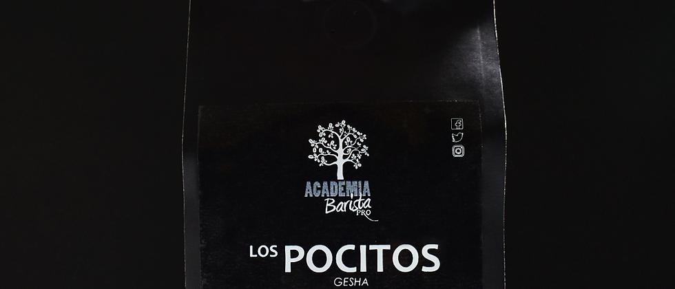 LOS POCITOS GESHA 12OZ