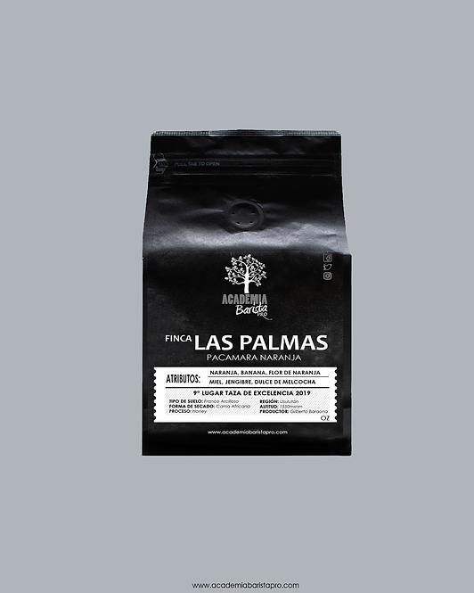 Las Palmas Pacamara Naranja Honey 12oz