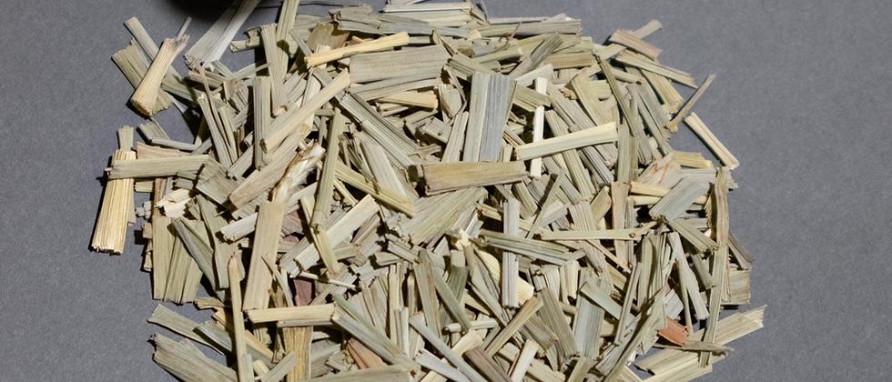 Tisane Herbal Lemongrass Tailandia Puro 2oz