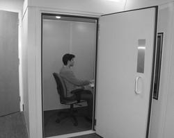 Cesario et al 2010 Booth Priming