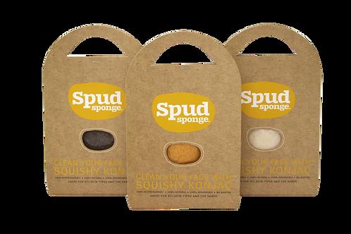 Konjac Share Pack - 3 sponges