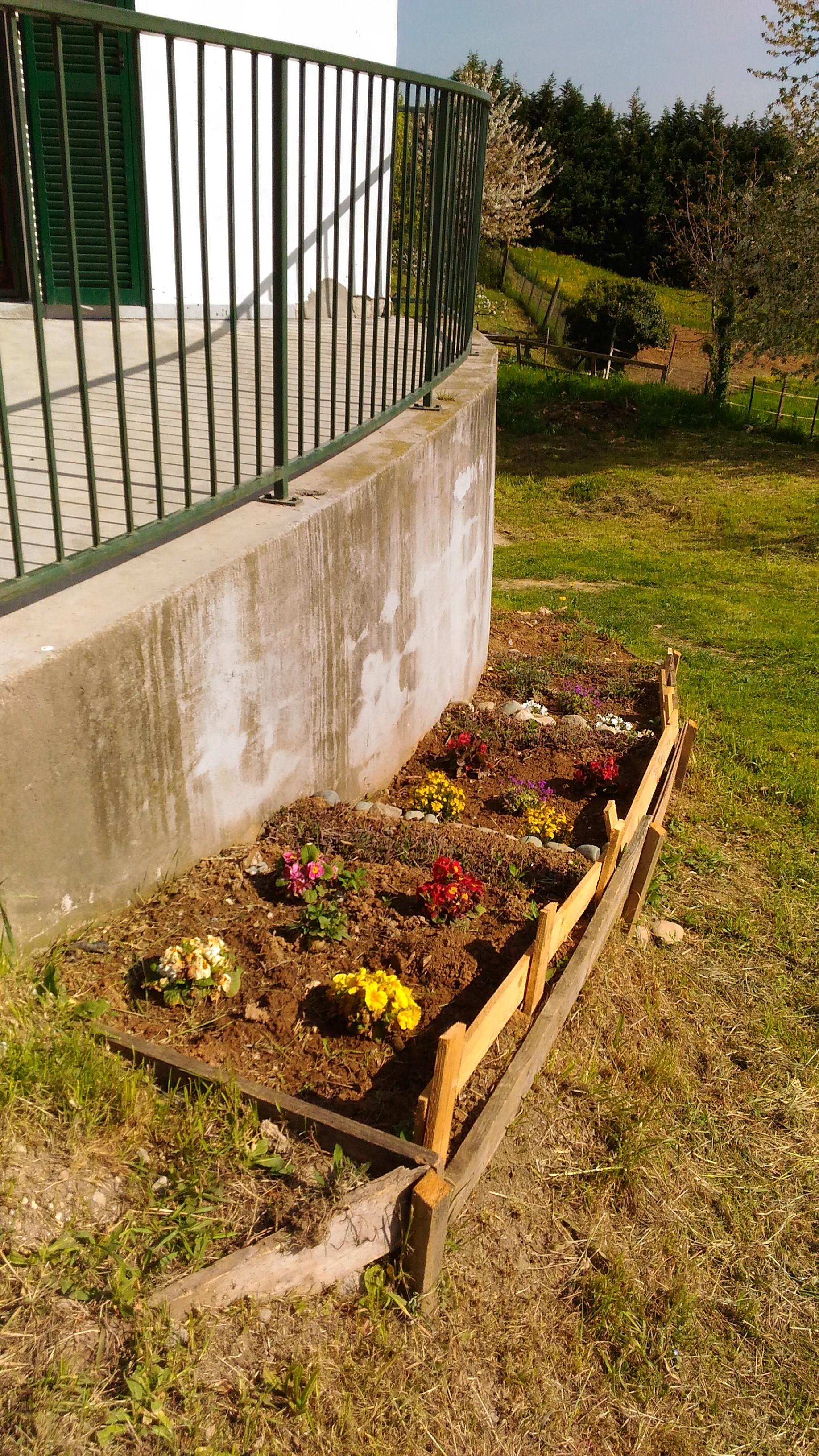 fiori_giardino.jpg