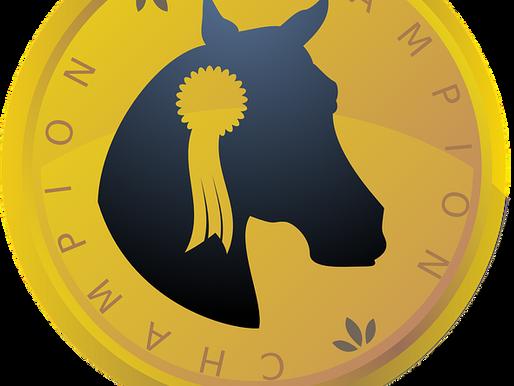 Il faut miser sur le cheval gagnant: le bitcoin