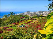 Madeira4.jpg