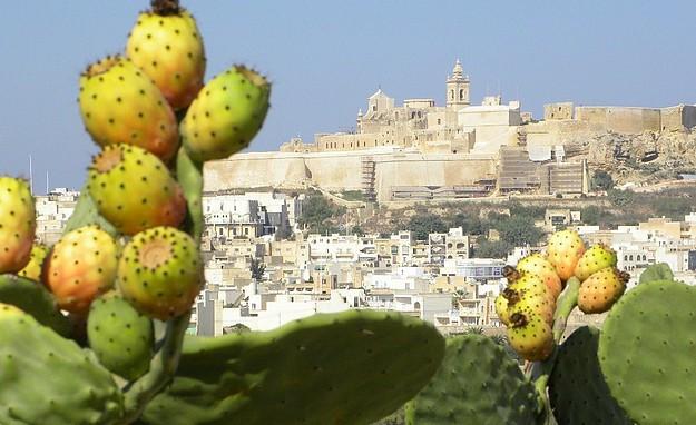 Gozo Victoria Citadel
