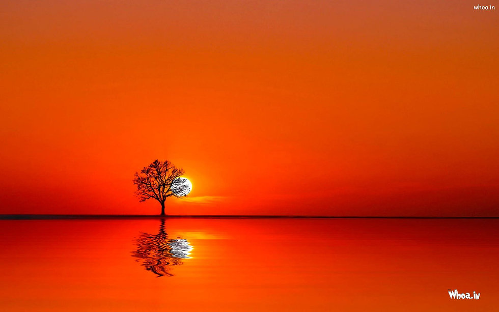 52-524280_beautiful-natural-sunrise-with