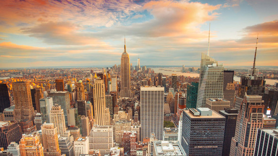 New York City: Concrete Jungle or Diverse Ecosystem?