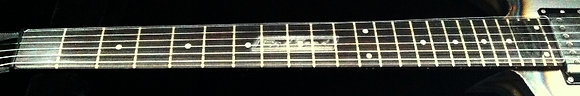 Fret Protector