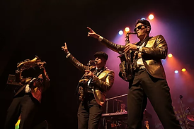 Bruno.webp
