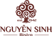 nguyen sinh logo.png