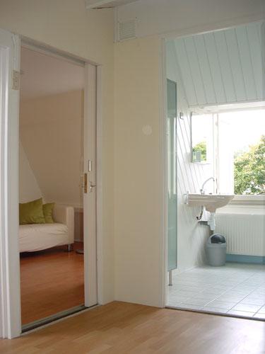 Livingroom and shared bathroom