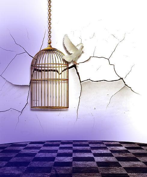 birdcage-454467_1920.jpg
