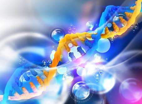 L'épigénétique, modifier l'expression de nos gènes