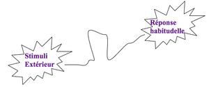Chemin neuronal - coeur d'énergie - Claude LEBLANC