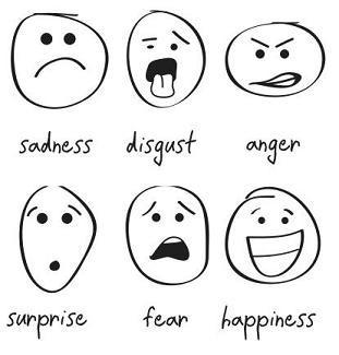 6 émotions primaires - émotions - coeur d'énergie