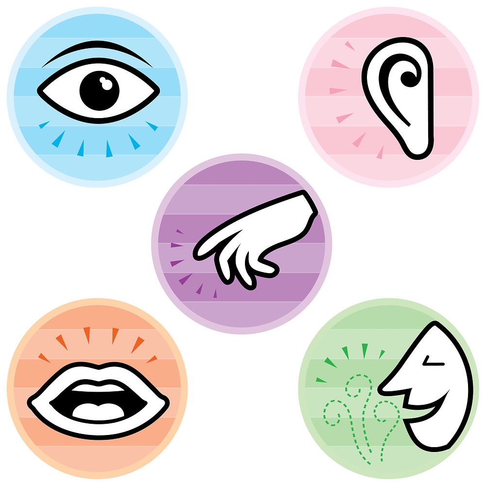 Concentrez vous sur vos 5 sens - coeur d'énergie