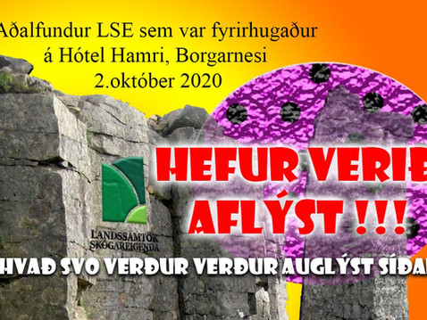 Aðalfundi LSE 2020 Aflýst !!!