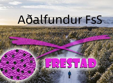 Aðalfundur FsS 2020
