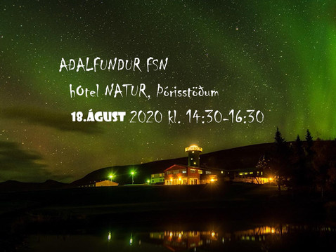 Aðalfundur - FsN