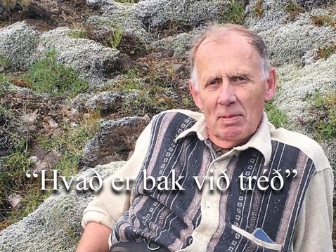 """Lífsstílskaffi I """"Hvað er bak við tréð?"""" Möguleikar sem liggja í íslenskum nytjaskógum."""