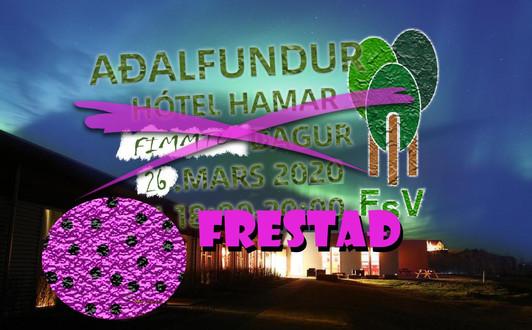 Aðalfundur FSV 2020
