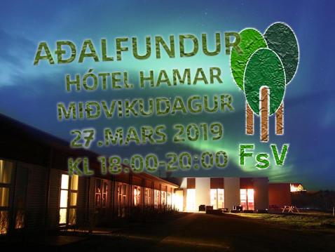 Aðalfundur FSV 2019