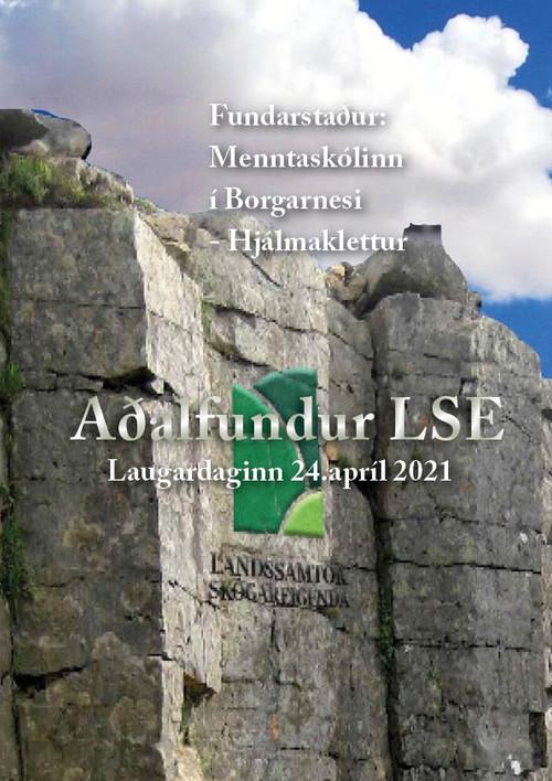 Aðalfundur LSE 2021