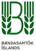 BI-logo og texti.jpg