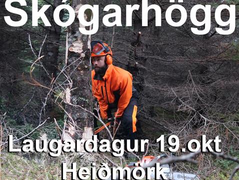 Skógrækt og umhirðu- námskeið