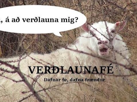Verðlaunafé, stýrð beit í skógi