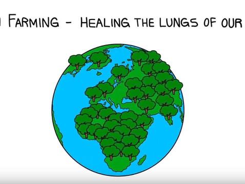 """Kolefnislandbúnaður, """"Carbon farming"""""""