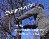 Skógarsnyrtar