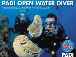 open-water-1
