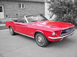 67 Mustang contrast