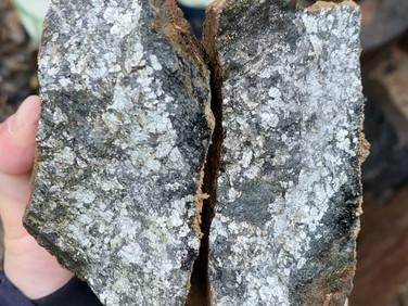 Mineralisation