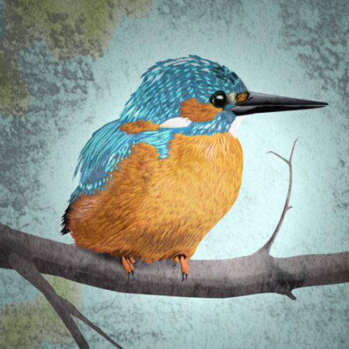 Fine Art print met Ijsvogel illustratie (Myrte)