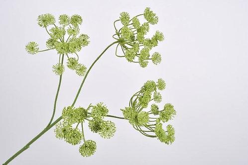 Dille tak groen silkka (zijdebloem)