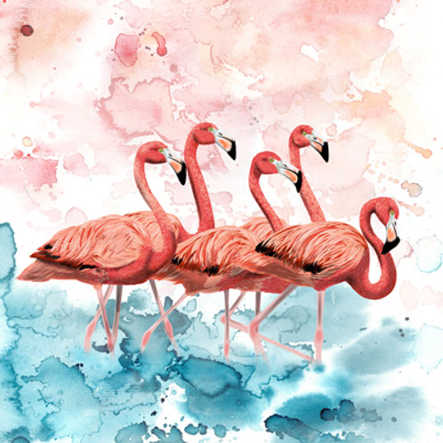 Fine Art  Flamingo's illustratie (Myrte)
