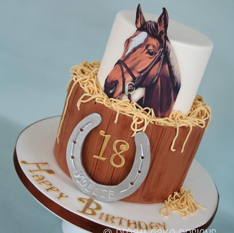 HORSE THEMED BIRTHDAY CAKE