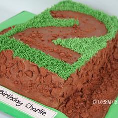 'CHARLIE' ~ DIRT TRACK & GRASS NUMBER CAKE
