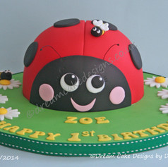LADYBIRD ~ BIRTHDAY CAKE