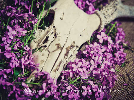 Musing about the energies of Spring – Witchcraft Essay