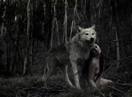 Pagan Poetry - Wolves in your Dreaming