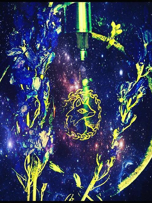 Starry Witch Spritz Spray - Dark Waters of Avalon