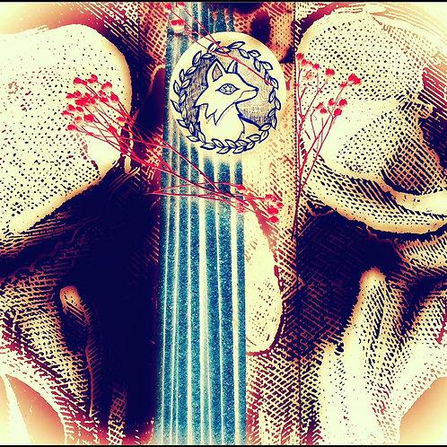 Starry Incense Sticks - The Spirit Realm - Ancestral Travel & Healing