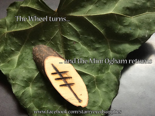 Mini Ogham Divination set