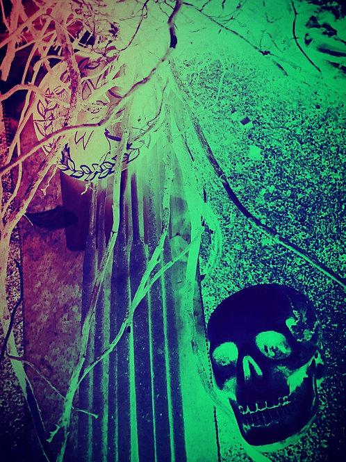 Starry Incense Sticks - Persephones' Garden of Souls