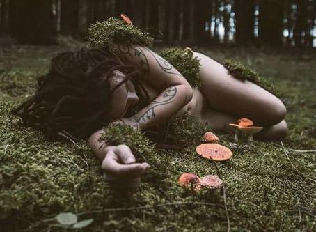 Pagan Poetry - The Underbush